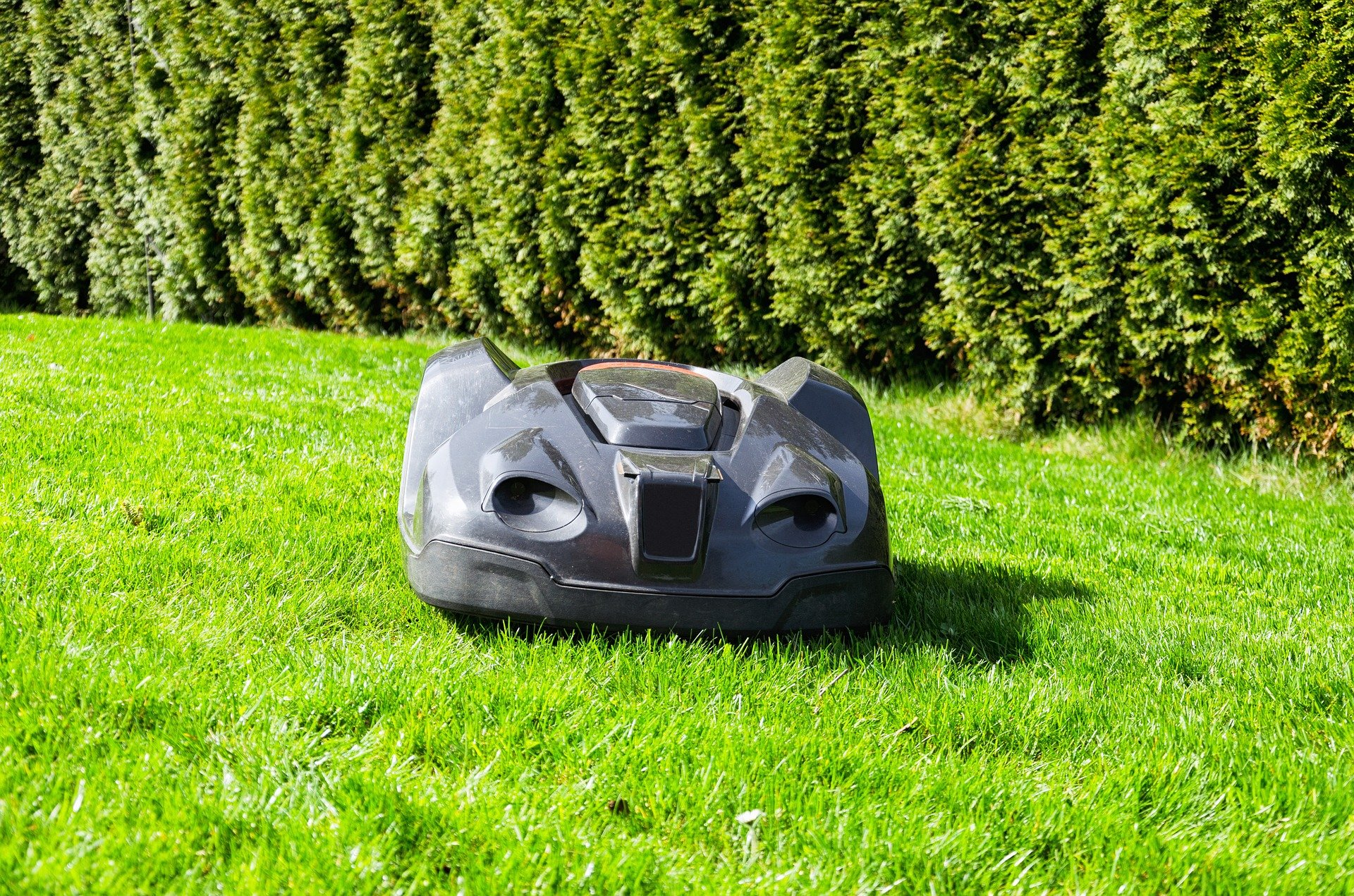 När du tröttnat på din robot - boka din egen super-trädgårds-veteran
