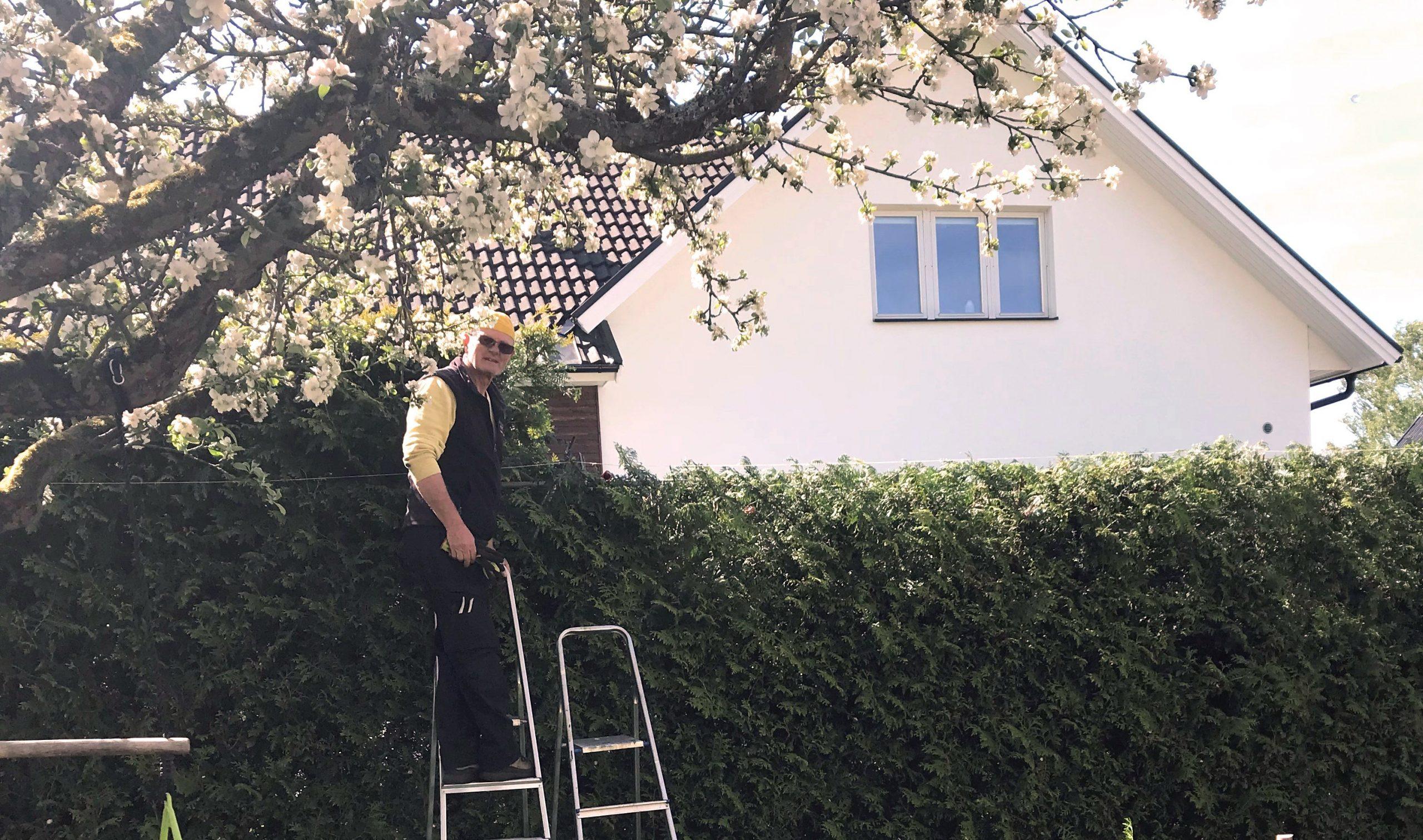 Trädgårdsuppdrag och hantverk - en perfekt kombo för Bengt